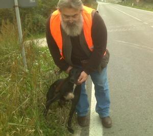 Una storia positiva nel soccorso agli animali incidentati