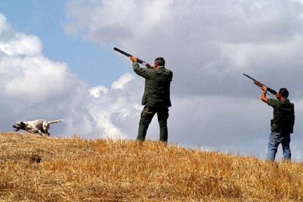 Gestione degli ambiti territoriali di caccia, approvate le modifiche al regolamento dalla Giunta regionale