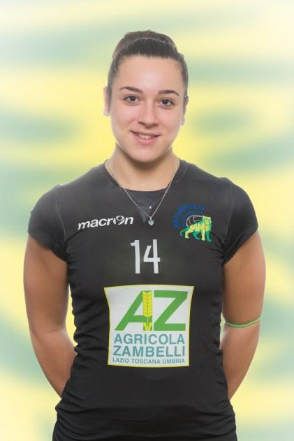 Pallavolo AZ Zambelli Orvieto, stagione 2016-17