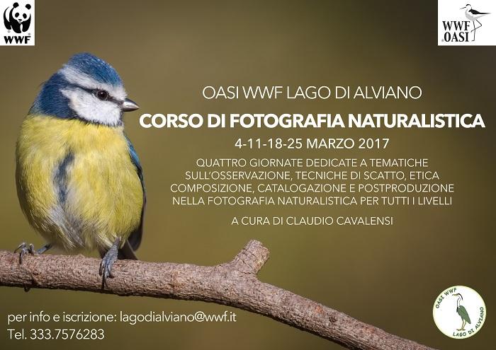 L'Oasi di Alviano si mette in mostra. A marzo Corso di fotografia naturalistica