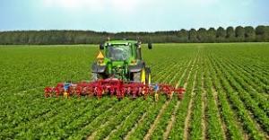 """""""Agricoltura, innovare per uno sviluppo sostenibile"""", il tema della VIII assemblea elettiva della Cia"""