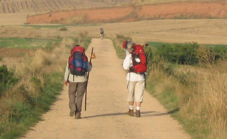 Diretti da Papa Francesco fanno tappa ad Orvieto i tre pellegrini altoatesini e i loro lama argentini