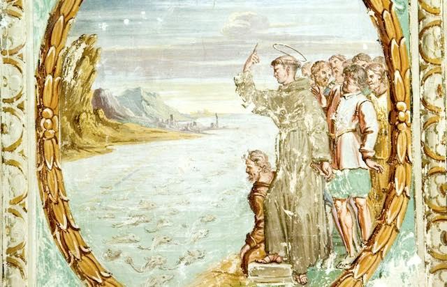 Pietre Vive, giornata di studio su San Tommaso d'Aquino e Beato Angelico da Massa