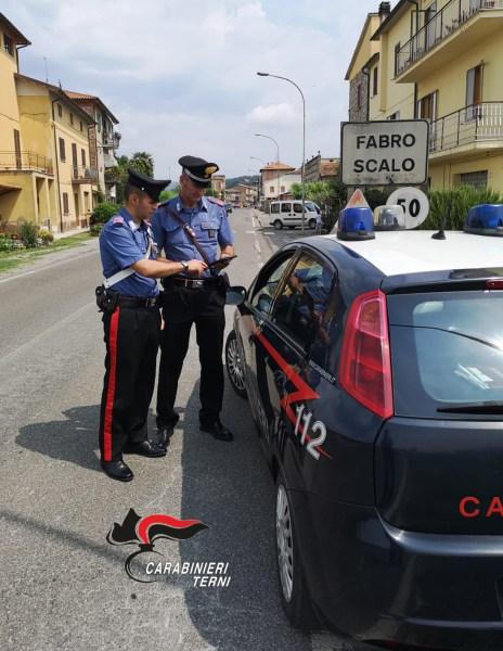 Ladri di maiali, sorpresi a rubare in un'azienda agricola. Arrestato un rumeno 33enne. Il complice è uccel di bosco