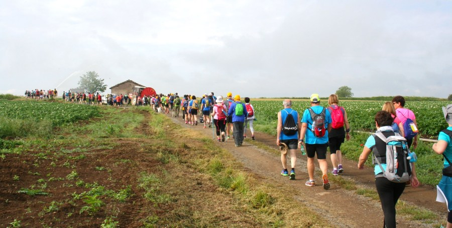 Nuovo evento Ultramarathon. Riproposta la tappa Radicofani-Acquapendente