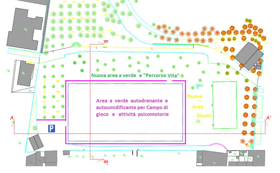 Parco del Pinaro, al via con la riqualificazione e messa in sicurezza degli alberi