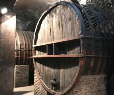 Il più grande museo del vino d'Europa a pochi chilometri da Orvieto