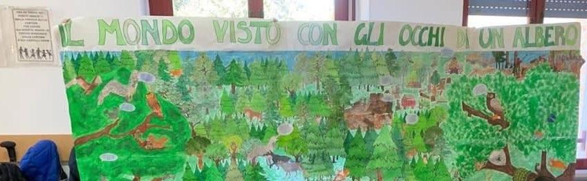 """""""Il mondo visto con gli occhi di un albero"""", i bambini della IV C superano la selezione regionale"""