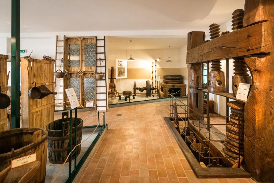 Il Gambero Rosso rende omaggio al Museo dell'Olio di Montecchio