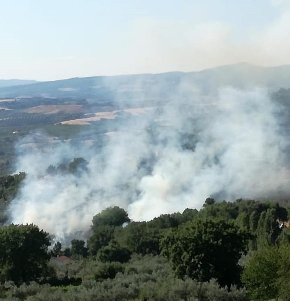 Pensionato sorpreso a incendiare gli olivi, arrestato il responsabile degli incendi di Montecchio e Guardea
