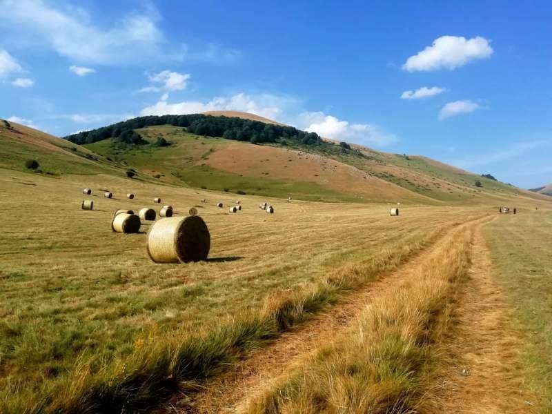 Un racconto d'estate con Amerini Trekking: da Castelluccio di Norcia a Shangri. Là, tra Hilton, Leopardi e Ivano Fossati