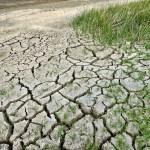 Accordo di partenariato fra Comuni per azioni congiunte di mitigazione del cambiamento climatico