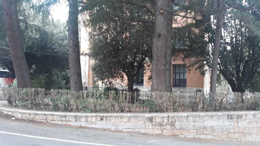Ex caserma Piave, iniziati i lavori di manutenzione, pulizia e bonifica di tutta la zona