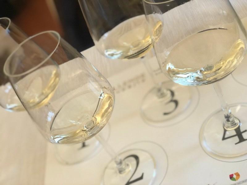 Il vino di Orvieto stupisce i giurati alla 12A edizione del Chellange Internazionale Eupoisa