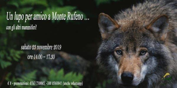 """Un lupo per amico a Monte Rufeno: visita guidata e """"merenda da lupi"""""""