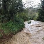Acquapendente, fiume Paglia ingrossato. Allerta gialla ma massima attezione