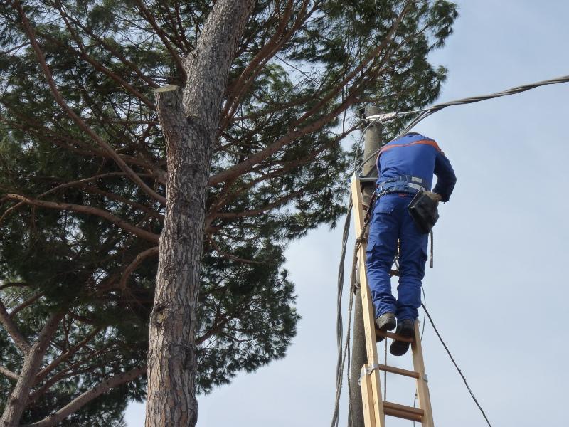 Sostenibilità ambientale, interventi al sistema elettrico su Parrano e San Venanzo