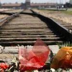 Giornata delle Memoria all'Unitus, targa in ricordo degli ebrei rastrellati a Viterbo