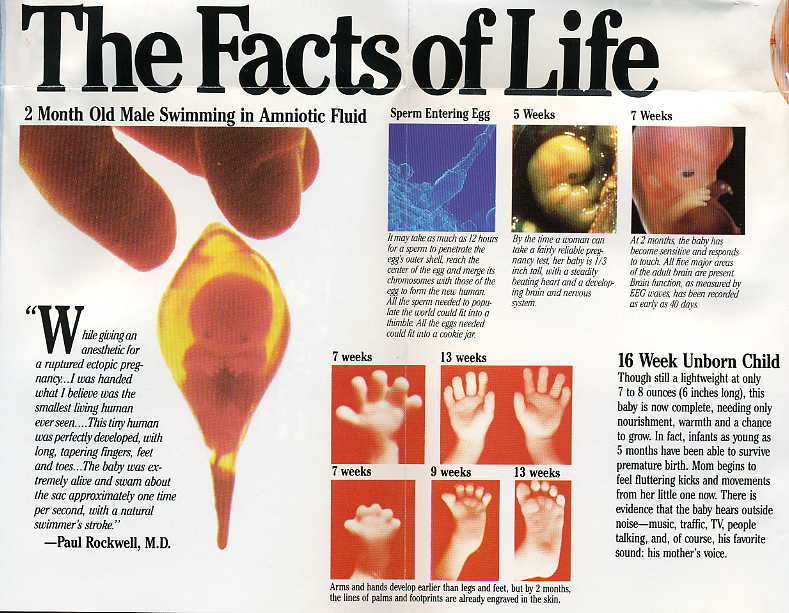 Reader Unborn Thumb