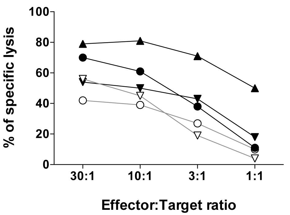 Chromium-51 (51Cr) Release Assay to Assess Human T Cells