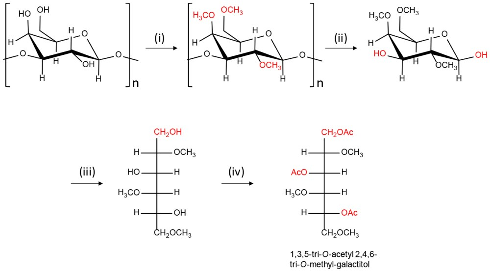 medium resolution of scheme of the preparation of partially methylated alditol acetates pmaas from polysaccharides having galactose residue i dmso naoh dmso suspension