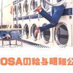 OSA-Styleの給与明細公開!Amazon販売実績のハラワタをお見せします。