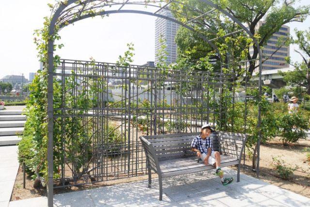 中之島公園-(41)
