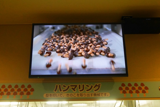 チョコレート工場-(65)