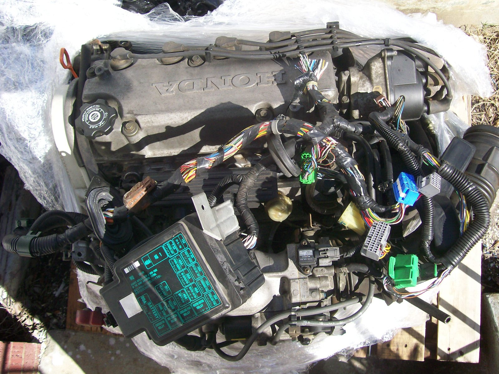 D15b Vtec Wiring Diagram Obd1 Mesmerizing Honda Images Best Image
