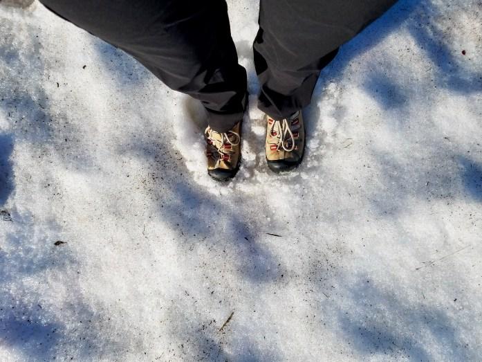 Ice in Iceland! (corny, I know)