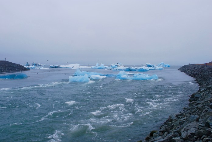 On their way out to become sea ice...