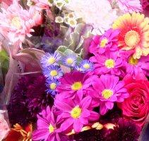 flowers_square_130117___01