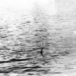 """Ian Wetherell. """"Loch Ness Monster the Surgeon's Photograph"""" (1934)"""