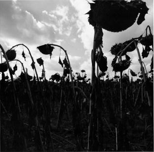Graciela Iturbide 02_Civitella_Italia_2001