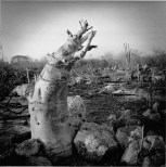 Graciela Iturbide 08_Merida_Yucatan_Mexico_90s