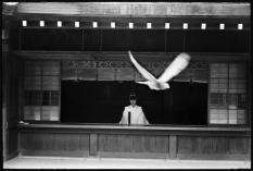 JAPAN. Kyoto. a1970.b. Elliott Erwitt