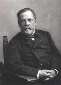Nadar - Gaspard Felix Tournachon -louis-pasteur-1895
