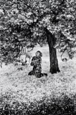 Parc de Sceaux, Cerisiers Japonais 1983 or '89