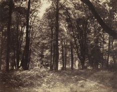 Gustave_Le_Gray_7