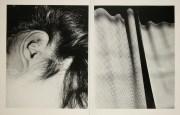 Daido Moriyama, Fragments_298