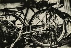 Daido Moriyama, light and shadow_69