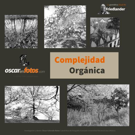 complejidad_organica