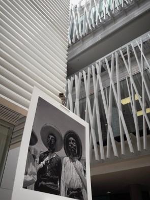Expo-diversidad-pueblos-indigenas-UP-3