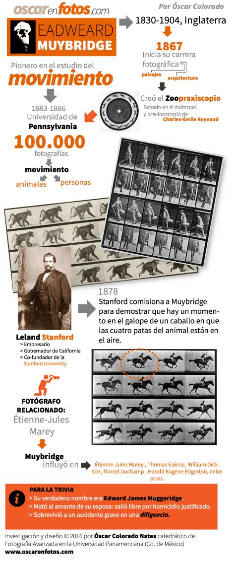 muybridge_bio_infografia