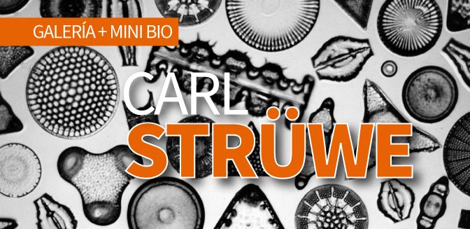 Carl Strüwe: Galería + Mini-Bio