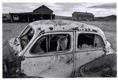 MEXICO. 1996. La Batea. Zacatecas. Mennonite Farmland.