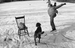 CANADA. Lambton County, Ontario. 1992. Moses, Noah and Naomi TOWELL skating on the pond behind the house with Banjo and the cat. The chair was used by Noah to lean on when he learned to skate. The pond used to be a shallow gravel pit from which stones were sold many years ago to the rural township for its roads. ©Larry Towell/Magnum Photos