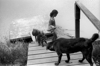 CANADA. Lambton County, Ontario. 1995. The dog Banjo faces off with Capernicus the raccoon while the TOWELL children swim in front of their house. ©Larry Towell/Magnum Photos