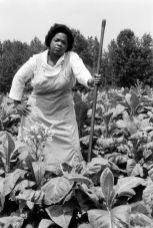 Gordon Parks. Oprah Winfrey
