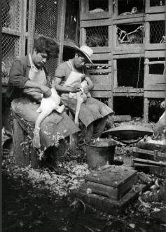 nacho_lopez_antiguo_mercado_de_la_merced_1951